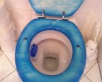 Toiletten als Energiespender-